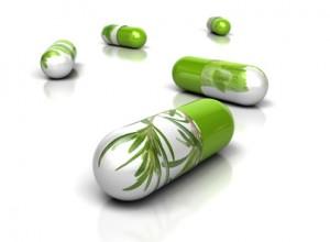 Allopathie et phytothérapie